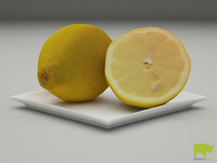 obj lemon resolution