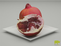 pomegranate resolution 3d model
