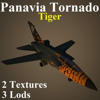 3d model of panavia tornado tig