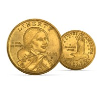 sacagawea dollar x