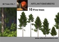 3d pine tree