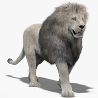 lion white fur mane 3d 3ds