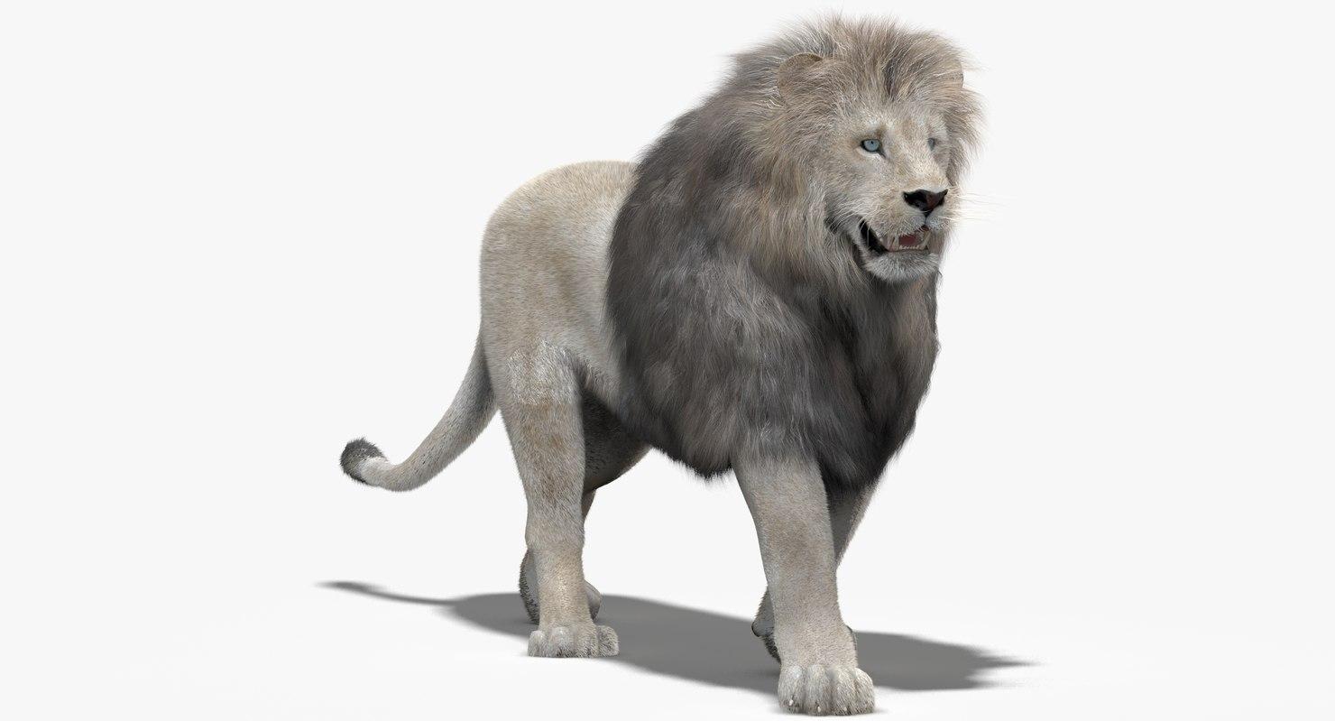 Lion-3d-model-fur-rigged-animated-01.jpg