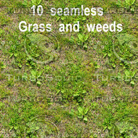 Grass And Weeds Collection 1