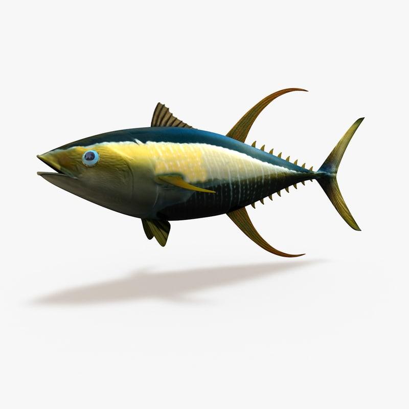 3d Tuna Fish: Yellowfin Tuna 3d Model