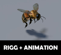 3d model bee wings animation