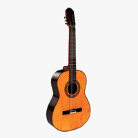spanish acoustics guitar max