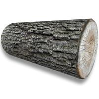 wood log 3d fbx