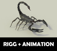 scorpion animation 3d blend
