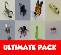 3d model of ultimate insects pack