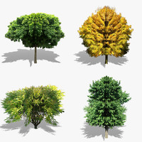 realistic tree set 3d model