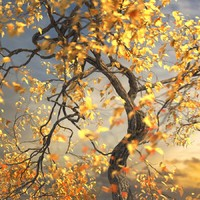 3d leaf season tree model