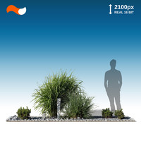 Cut Out Plant Bed M 1