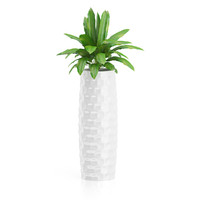 3d plant tall white