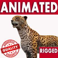wild cats leopard 3d model