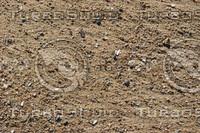 Beach_Texture_0007