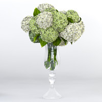 hydrangea design 3d max
