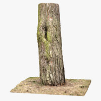 3ds max tree trunk scan