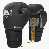 Boxing Gloves Everlast Protex