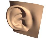 standard human ear head 3d obj