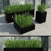 3d modern grass set iii model