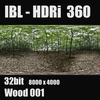 rn_ibl_woods_001