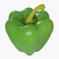 green pepper 3d model