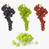 grapes green black 3d 3ds