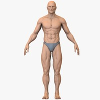 3d athletic muscles
