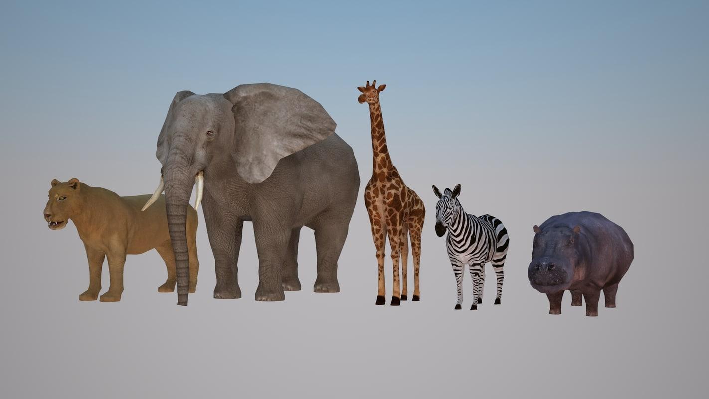 safari_animal_model_01.jpg
