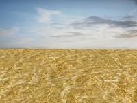 Beach foam 33