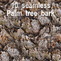 Palm Tree Bark Collection 5