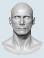 base head male