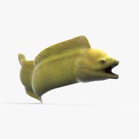 3d eel green model