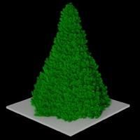 Stylish Christmas Tree
