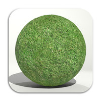 Plain Grass Texture