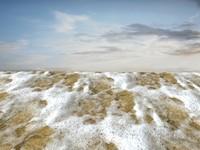 Beach foam 37