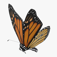 monarch butterfly flying obj