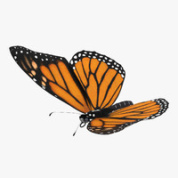monarch butterfly flying 3d model