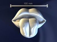 lips tongue 3d max