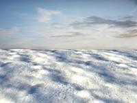Beach foam 41