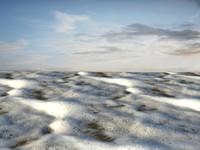 Beach foam 42