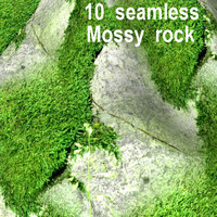 Mossy Rock Collection 17