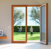 French Double Door - Double Door Window