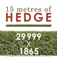 15 metres of HEDGE