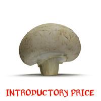 closed mushroom 3d model