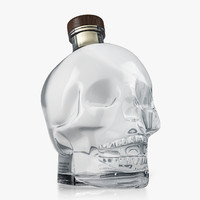 crystal head vodka 3d model