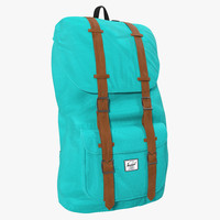 backpack 8 turquoise 3d max