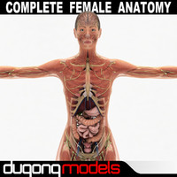 max dugm01 female anatomy pack