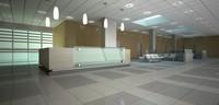 reception area ceiling 3d max